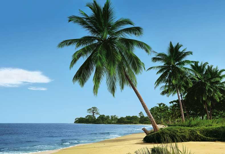 african-beach